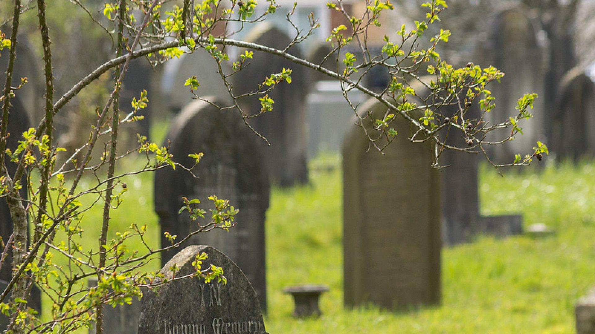 Polskie Cmentarze
